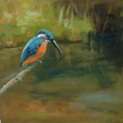 vogel-rietvogel-Lynden