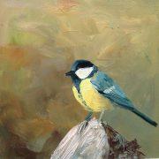 Koolmees-vogel-tuinvogels-lynden