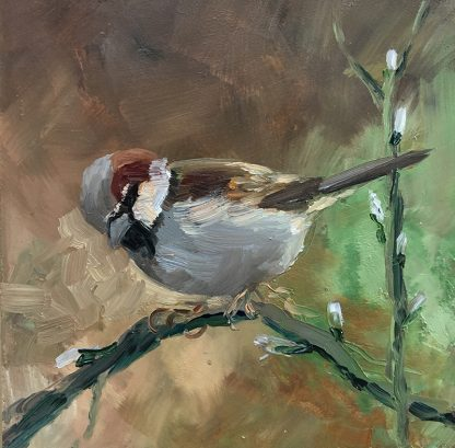sparrow-oilpaint-olieverf- musje-schilderij-vogels-birds;Lynden
