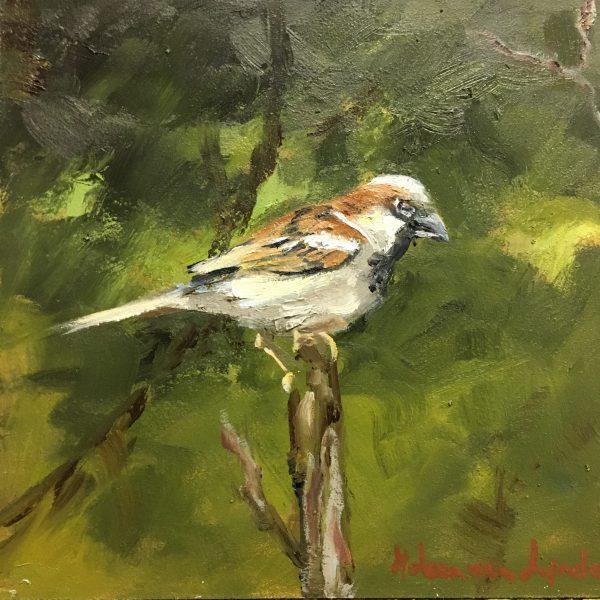 sparrow-mus-birds-oilpaintign-heleenvanlynden-olieverfschilderij