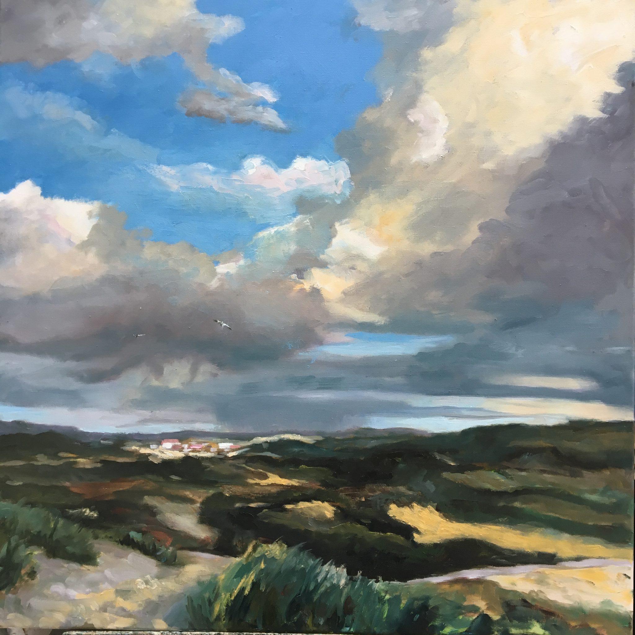 Gezicht op Zandvoort-Zandvoort-duinen-dunes Holland-Sky-skies-Heleenvanlynden-