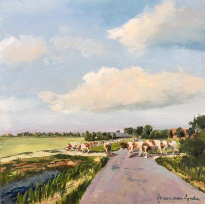 crossing cows, cows, landscape, dutch landscape,
