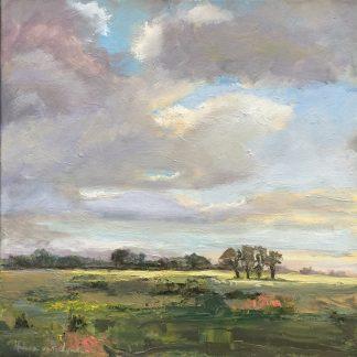 landscape-dutch-Naardermeer-Keverdijk-lynden