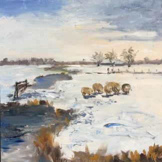 sheep in snow, snowlandscape, Heleen van Lynden
