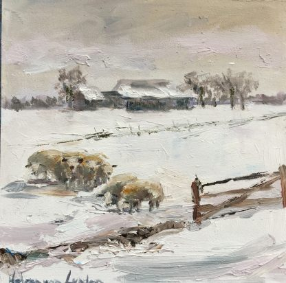 Sheep in snow, winter, Heleen van Lynden, snowlandscape