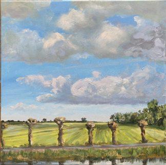 wilgen-googweg-, oilpainting, willows, Muiderberg