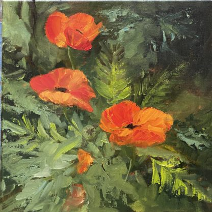 klaprozen, poppies, summertime, flowers, garden, heleen van lynden, oilpainting,